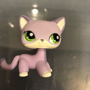 Lps shorthair cat #2094